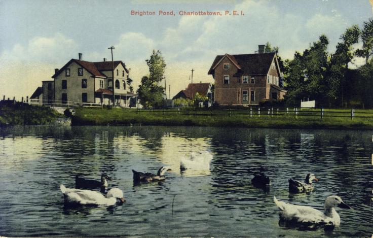 Postcard of depicting Government Pond as it looked in the early 20th century. 'Black Sam's Bridge' is visible to the left.